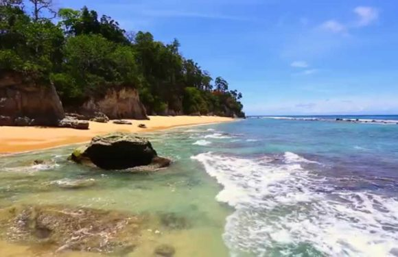 How to Plan For a Budget Trip To Andaman Island